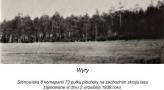 Kampania - Wyry  (4).jpg