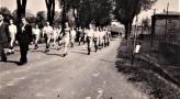 W drodze na pochod 1-majowy. '60.jpg